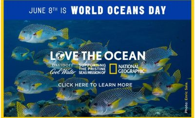 love-the-ocean-da#LoveTheOcean Davidoffvidoff